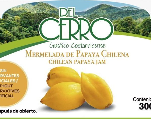 MERMELADA PAPAYA CHILENA